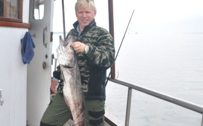 Fisketurer i Bergen med Bergen Fjordtours